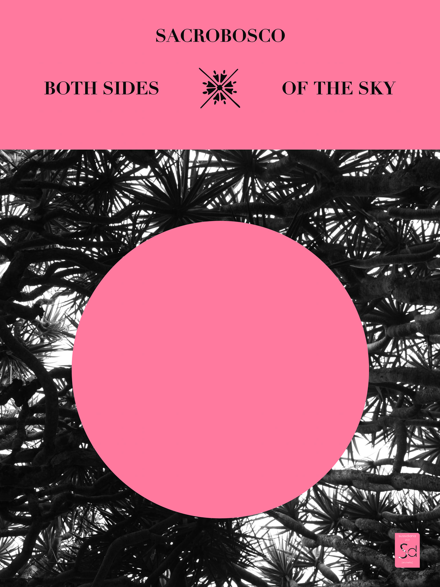 Cover Both Sides Of The Sky, musica